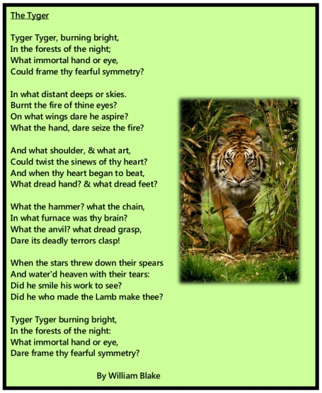 tyger tiger